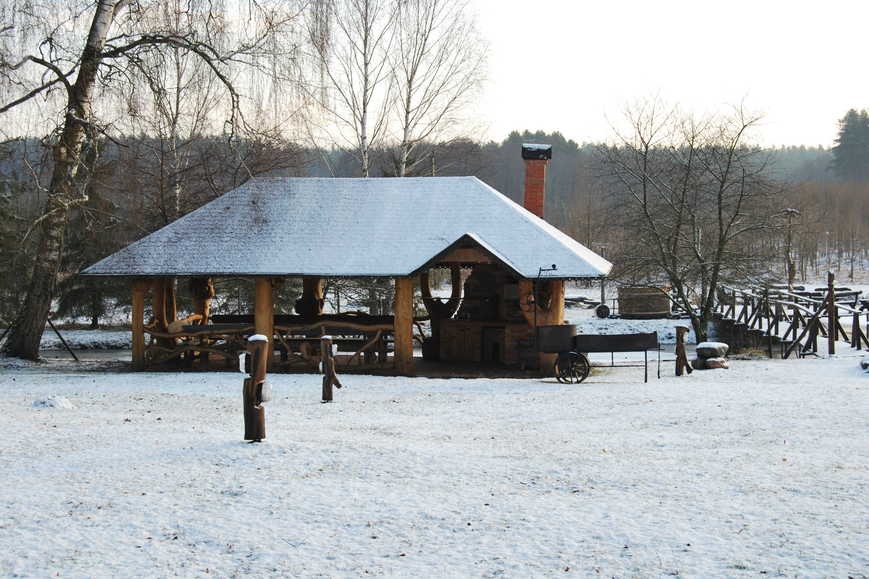Žiemą